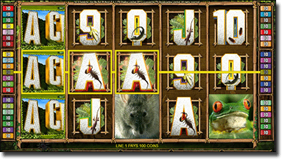 Microgaming's I'm a Celebrity Get Me Out of Here online pokies