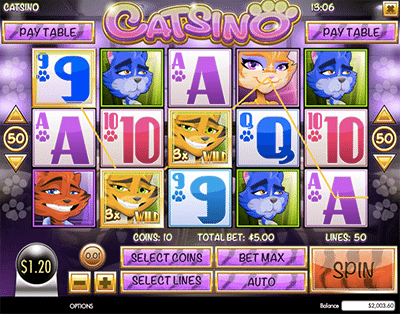 Catsino online pokies by Rival Gaming