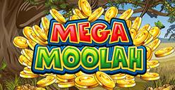 Mega Moolah Slots game jackpot