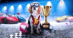 Rizk Races promo
