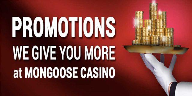 Mongoose no deposit required bonus