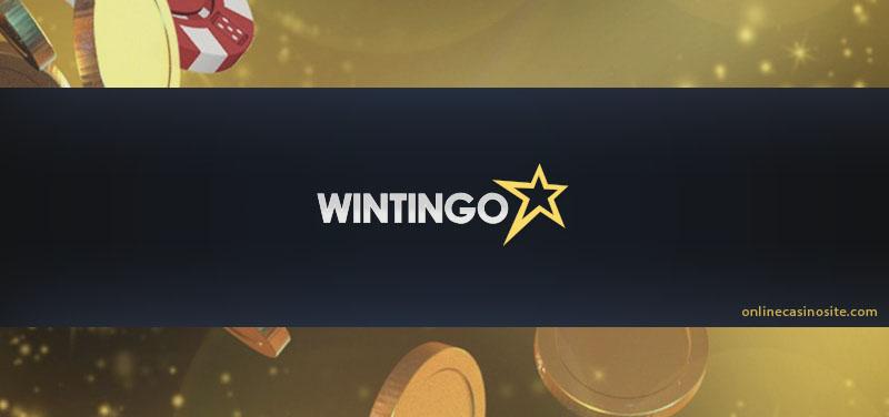 Wintingo Online Casino review